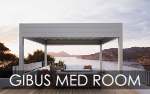 Gibus Med Room